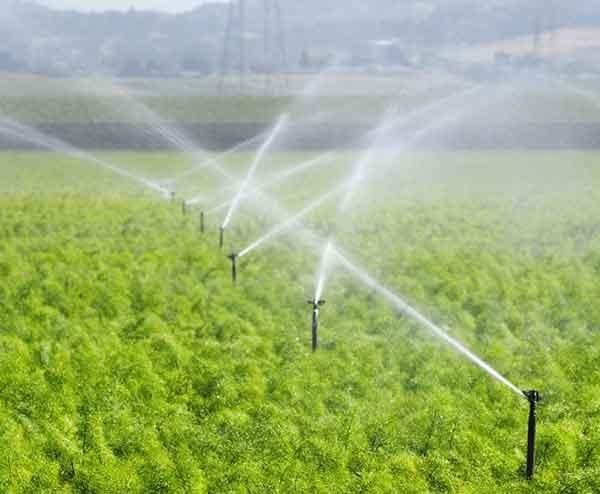 果园灌溉设备